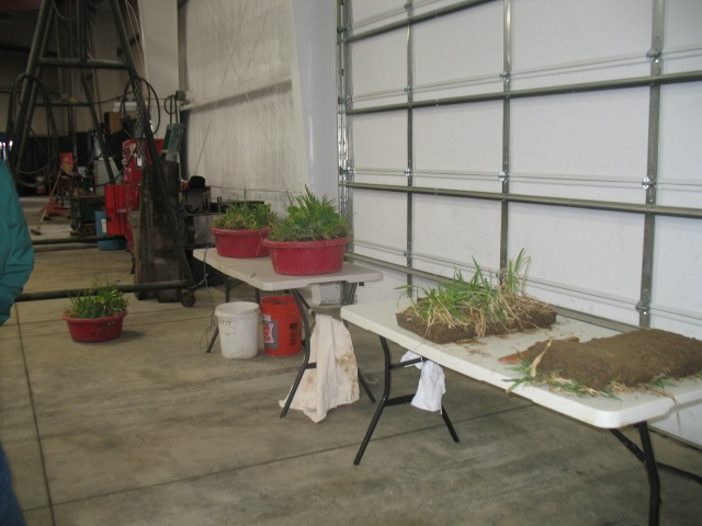 actual multi species cover crops on display