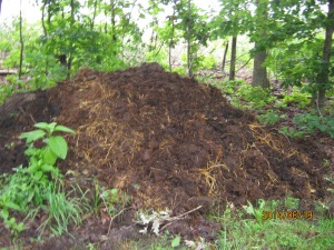 compost pile sunk two feet this week