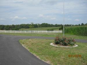 Tobing future pasture 2