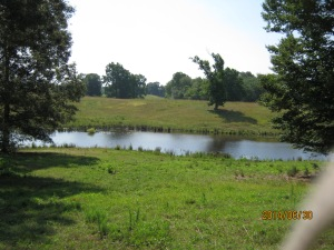 Tobins good pond