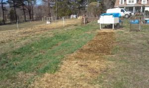 chicken tractor tracks